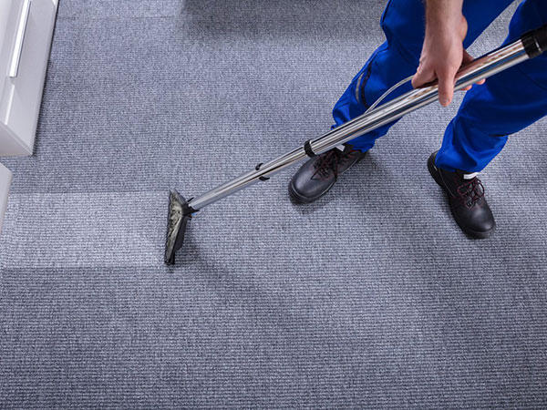 When Should You Hire a Professional for Carpet Cleaning?