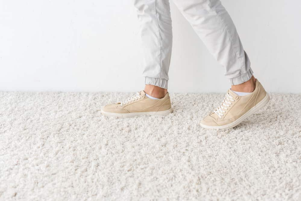 Chem-Dry vs. Steam Carpet Cleaning – Which Is Best?